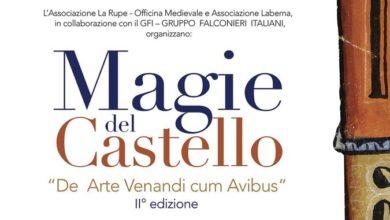 Photo of Grande attesa per il II° FESTIVAL DELLA FALCONERIA, Magie del Castello