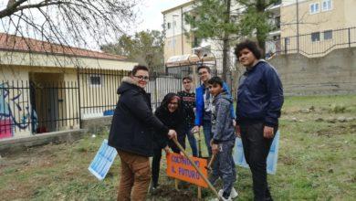 """Photo of """"Coltiviamo il futuro"""". Progetto della scuola media Neglia-Savarese"""