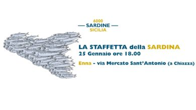 Photo of Il 25 gennaio, nove province siciliane chiudono insieme la Staffetta della Sardina