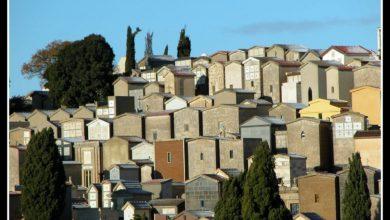 Photo of Il cimitero di Enna torna ad essere aperto domenica mattina