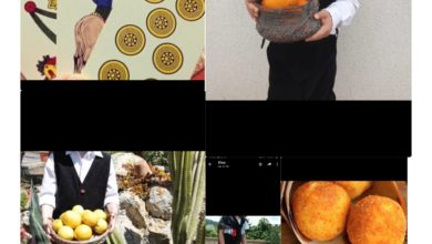 Photo of I bambini della scuola dell'infanzia Neglia /Savarese omaggiano la Sicilia attraverso un video