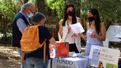 Photo of Bilancio positivo per le Giornate FAI al Villaggio Bizantino di Calascibetta