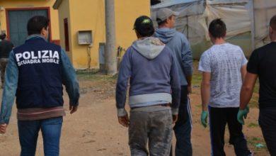 Photo of Muore mentre raccoglie mandorle. Deferito alla magistratura per lavoro irregolare il proprietario
