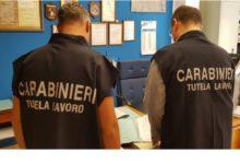 Photo of Piazza armerina: Controlli esercizi pubblici, contestata maxi sanzione di 22.450 euro, attività sospesa per lavoratori in nero e carenze igienico sanitarie