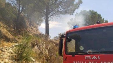 Photo of Due grossi incendi in provincia. Ore impegnative per i vigili del fuoco
