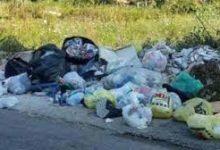 Photo of Viabilità. Raccolti quintali di rifiuti abbandonati sulle Sp 88 e 30